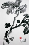 Japanese Ink Painting, Fig Tree Picture