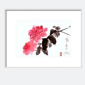 Pink Roses Print Sumi