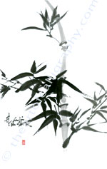 Bamboo Sumi Painting - Ink Painting Prints