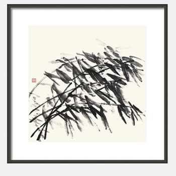 Gentle Bending Bamboo - Homage to Catalonia. Framed Bamboo Print.