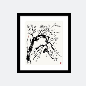 Spring In Black And White, Almond Blossom Ink Painting