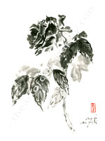 Blossoming Rose - Sumi Painting Print