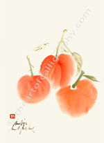 Freshly Picked Mandarines Chinese Watercolors Print